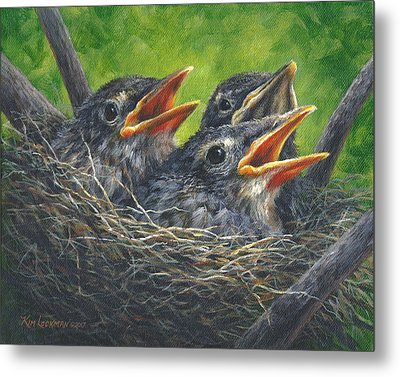 Baby Robins Metal Print by Kim Lockman