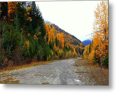 Back Road Color Metal Print