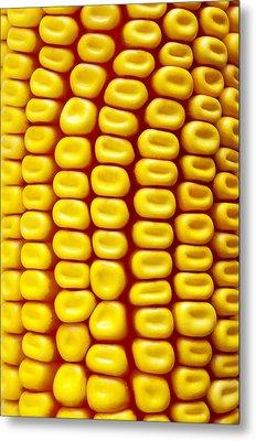 Background Corn Metal Print by Carlos Caetano