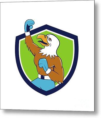 Bald Eagle Boxer Pumping Fist Crest Cartoon Metal Print by Aloysius Patrimonio