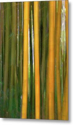 Bamboo Impressions Metal Print