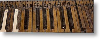 Bamboo Organ Keys Metal Print by Betsy Knapp
