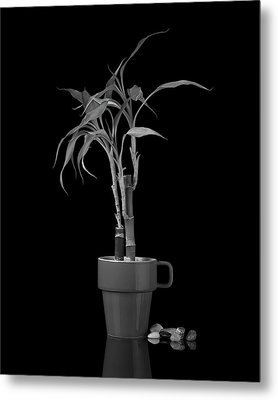 Bamboo Plant Metal Print