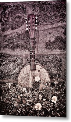 Banjo Mandolin On Garden Wall Metal Print by Bill Cannon