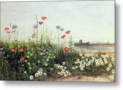 Bank Of Summer Flowers Metal Print by Andrew Nicholl