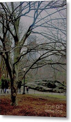 Bare Tree On Walking Path Metal Print by Sandy Moulder