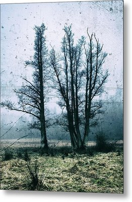 Bare Winter Trees Metal Print by Karen Stahlros