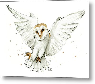 Barn Owl Flying Watercolor Metal Print by Olga Shvartsur