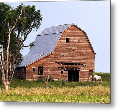 Metal Print featuring the photograph Barn With White Horse by Don Durfee