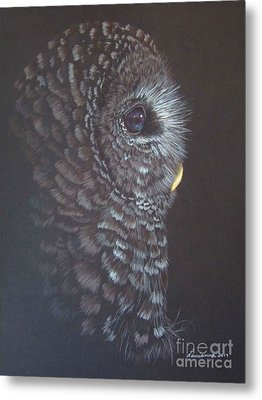 Barred Owl 2 Metal Print by Laurianna Taylor