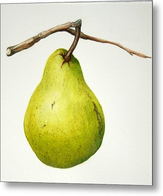 Bartlett Pear Metal Print by Margit Sampogna