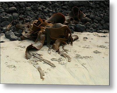Basalt And Kelp Metal Print by Terry Perham