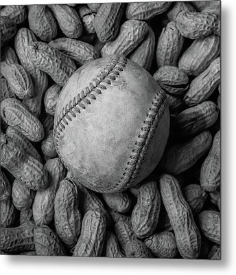 Baseball And Peanuts Black And White Square  Metal Print