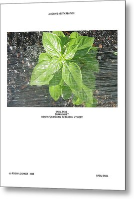 Metal Print featuring the photograph Basil Basil by Robin Coaker