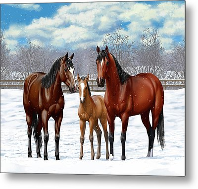 Bay Horses In Winter Pasture Metal Print
