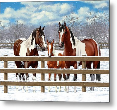Bay Paint Horses In Snow Metal Print