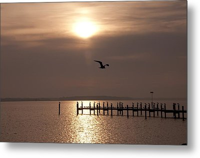 Bay Sunrise Metal Print by Bill Cannon