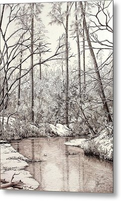 Bayou Lacombe At Peace Grove Ll Metal Print by Colleen Marquis