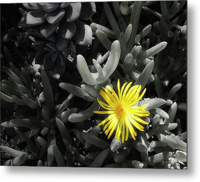 Be Different Metal Print