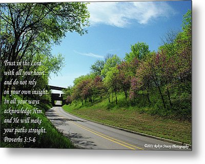 Be Not Afraid Metal Print by Robyn Stacey