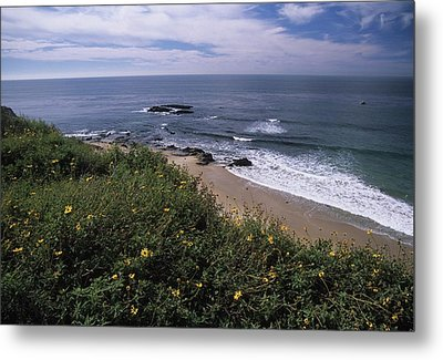 Beach Waves And Wildflowers Metal Print by Don Kreuter
