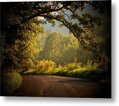 Beautiful Day Metal Print by Joyce Kimble Smith