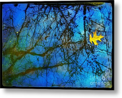 Beautiful Mud Puddle Metal Print