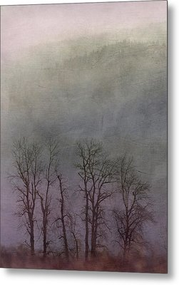 Metal Print featuring the photograph Beauty In The Wind by Angie Vogel