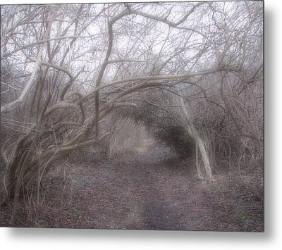 Metal Print featuring the photograph Beckoning Dream  by Roxy Riou