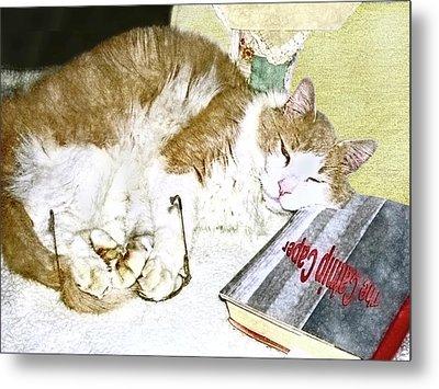 Bedtime Cat Metal Print by Susan Leggett