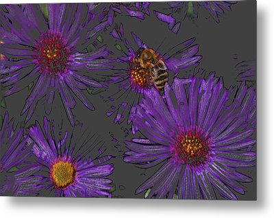 Bee With Asters On Gray Metal Print by ShaddowCat Arts - Sherry