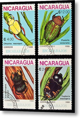 Beetles Stamps Collection. Metal Print by Fernando Barozza