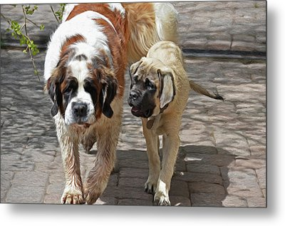 Bell And Maya Metal Print by Susie Fisher