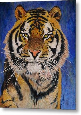 Bengal Tiger Metal Print by Don MacCarthy