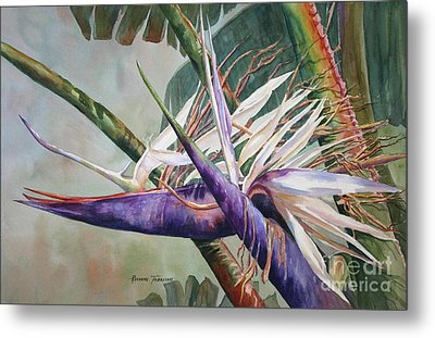 Metal Print featuring the painting Betty's Bird - Bird Of Paradise by Roxanne Tobaison