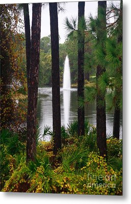 Metal Print featuring the photograph Between The Fountain by Lori Mellen-Pagliaro