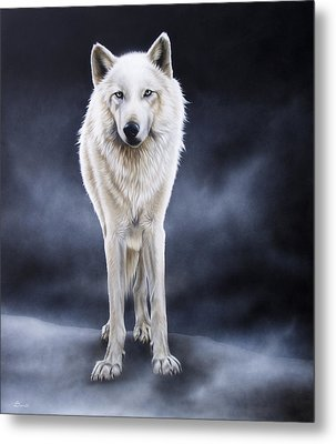 'between The White And The Black' Metal Print by Sandi Baker