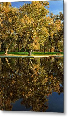 Bidwell Park Reflections Metal Print by James Eddy