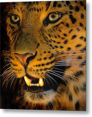 Metal Print featuring the painting Big Cat by Louise Fahy