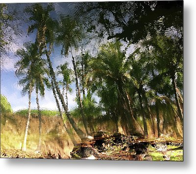 Big Island Reflections Metal Print