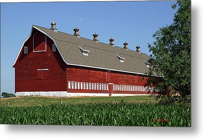 Big Red Barn In Spring Metal Print by Edward Peterson