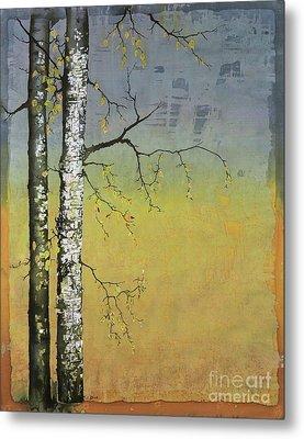 Birch In A Golden Field Metal Print by Carolyn Doe