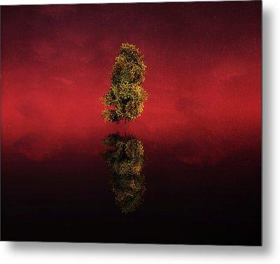 Birch In A Red Landscape Metal Print by Jan Keteleer