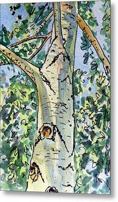 Birch Tree Sketchbook Project Down My Street Metal Print by Irina Sztukowski