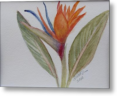 Metal Print featuring the painting Bird Of Paradise by Donna Walsh