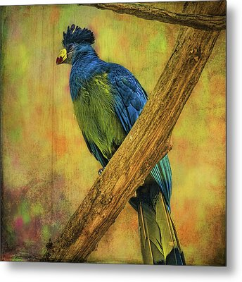 Metal Print featuring the photograph Bird On A Branch by Lewis Mann