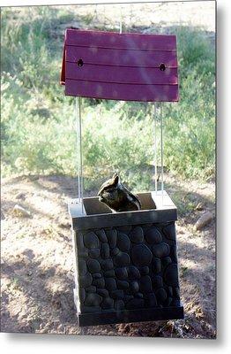Bird Seed Thief Chipmunk Metal Print