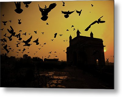 Birds In Flight At Gateway Of India Metal Print