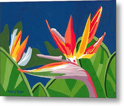 Metal Print featuring the painting Birds Of Paradise by Terry Taylor