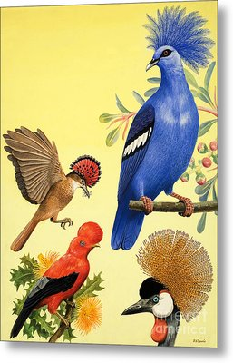 Birds With Crowns Metal Print